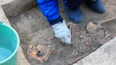 finding : Archaeologically Sites, Archaeologists explore the huge tomb from the mid-18th century, Video clip