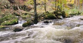 river bed : Mountain wild river Doubrava in Czech Republic. Valley in beautiful autumn fall colors. Picturesque landscape. Stock Footage