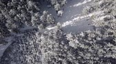 непосредственно над : Flying over the snowy forest, top aerial view of winter landscape