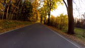 acero : car drive in autumn landscape with sunny day. Countryside road. Fall concept