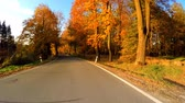 car drive in autumn landscape with sunny day. Countryside road. Fall concept