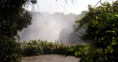 vista : Victoria falls after the rain season in May, the waterfall is full of water, everywhere is mist. Zambia Zimbabwe border, Africa wilderness landscape. Wonder of the World Stock Footage