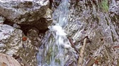 fast river : Close up of waterfall, water falling over stones in slow motion, streams falling over rocks, splashes, small mountain stream