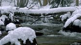 icicles : A beautiful crystal clear stream in winter with snow flows through woods, Bistriski Vintgar, Slovenia