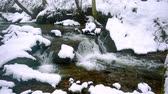 intocado : A beautiful crystal clear stream in winter with snow flows through woods, Bistriski Vintgar, Slovenia