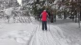pálido : Woman in cross-country skiing. Hiking on a snowy day. Vídeos