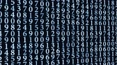 numerais : white blue digital data on screen