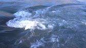 cheirando : Mountain river.Two videos in one. Slow-motion shot. Mountain Altai.