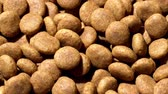 nut : Food for dogs. Dry food. Rotation. Close up.