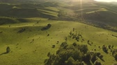 ottimo : Aerial Drone Footage View: Flight over autumn mountain village with forests, fields and river in sunrise soft light. Majestic landscape. Beauty world. 4K.