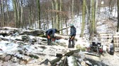 Woodcutters at work in a snow covered woodland on Kapuzinerberg, a mountain in Salzburg, Austria.
