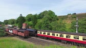 A steam train is seen arriving in Goathland Station.  The station is on the North Yorkshire Moors Railway in Northern England. Stockvideo