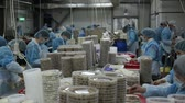 preservação : People work at fish factory packing preserves