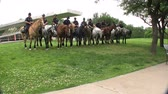 mounted : Dallas Mounted Police Horse Unit Stock Footage