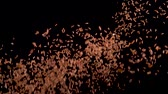 bois : Red rice flies up and falls on a black background. Slow motion. Food video Vidéos Libres De Droits