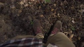 chutando : POV View from the eyes to the feet of a man standing in place in the forest. The man is lost in the forest and does not know where to go. 4K