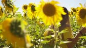 Women in the field of sunflowers Stock Footage