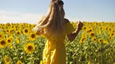 A young girl in a yellow dress runs in sunflowers. Slow motion