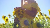 A young girl in a yellow dress with sunflowers in her hands. Close-up Stock Footage