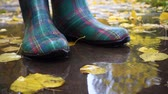 csomagtartó : rainboots at the puddle Stock mozgókép