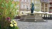 flowerpot : flowers on the Old Market Square Rynek in Poznan, Poland Stock Footage