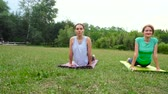 two gilrs practicing yoga exercises outdoors