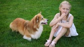 лизать : girl and her corgi fluffy dog eating ice cream on a grass at the park Стоковые видеозаписи