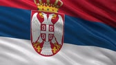 serbia : Flag of Serbia gently waving in the wind. Seamless loop with high quality fabric material.