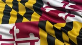 американский флаг : Realistic Ultra-HD Maryland state flag waving in the wind. Seamless loop with highly detailed fabric texture. Loop ready in 4k resolution.