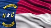 американский флаг : Realistic Ultra-HD North Carolina state flag waving in the wind. Seamless loop with highly detailed fabric texture. Loop ready in 4k resolution. Стоковые видеозаписи