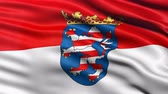brasão : Seamless loop of Hesse state flag in Germany waving in the wind. Realistic loop with highly detailed fabric. Stock Footage