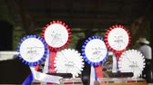 домик : Sliding over SIRHA reining rosettes 4K. Rosette prizes waiting for winner of western reining competition. Стоковые видеозаписи