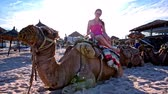 Girl sit on camel at sunset. Camel on sand beach lying on ground with straw umbrellas around. Sun shining in background. Wideo