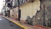 alley wall : A mural in  a street of Kluang Johor Malaysia. a new attraction to tourist
