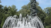serbia : Fountain water jets changing shapes of spraying in public park in Vrnjacka Banja, Serbia. Stock Footage