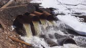 effluent : rusty pipe industrial liquid waste into river,