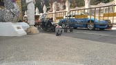 gıda maddeleri : Couple of pigeons in intimacy copulating on the street -  fixed camera medium shot Stok Video