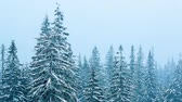 jinovatka : Beautiful winter landscape with snow covered trees. Winter mountains. Dostupné videozáznamy