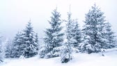 облачность : Beautiful winter landscape with snow covered trees. Winter mountains. Стоковые видеозаписи