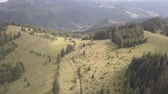 karma : Aerial top view other summer carpathian mountains near by Dzembronya village, Ukraine Stok Video
