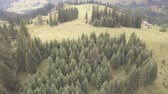 передатчик : Aerial top view other summer carpathian mountains near by Dzembronya village, Ukraine Стоковые видеозаписи
