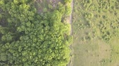 escavadora : Aerial drone view to Bukk Mountains National Park, Hungary Stock Footage