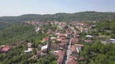 Aerial view of the town of Kakheti. Signagi Stock Footage