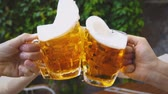 kiloccsantás : HD Beer Toast in Slow Motion Stock mozgókép
