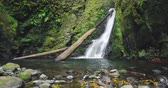 gerçek zamanlı : Salto do Cagarrao Waterfall located on Prego river, Sao Miguel Island, Azores, Portugal