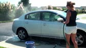 esponja : Rinsing all the soap off of a car Stock Footage