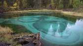 Amazing Blue Geyser Lake in the Mountains of Altai, Siberia Stok Video