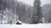 Abandoned Small Wood House Under Snowfall in the Winter Mountains