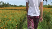 aztek : Woman walking on Marigold field, Indonesia, Bali. Sunny day.
