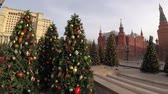 new capital : MOSCOW, RUSSIA - NOVEMBER 24, 2019: Christmas trees on Manezhnaya square, Kremlin, Red Square. Stock Footage
